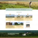 pantalla principal web