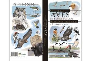 Guía de las aves del parque natural sierra norte de Sevilla y estribaciones