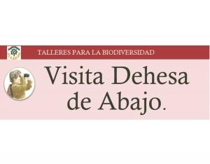 13_Visita_Dehes_De_Abajo
