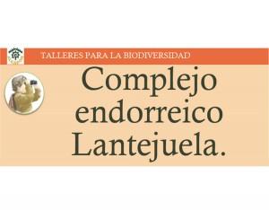 14_Complejo_Endorreico_Lentejuela