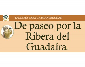 3_De_Paseo_Por_La_Ribera
