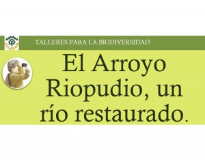 4_El_Arroyo_Riopudio