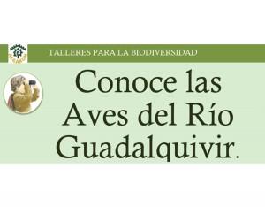 5_Conoce_LAs_Aves_Del_Rio