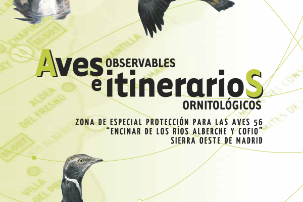AVES OBSERVABLES Y RUTAS ORNITOLOGICAS EN SIERRA OESTE DE MADRID