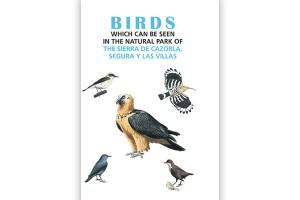 Birds which can be seen in the natural park of sierra de cazorla, segura y las villas_2