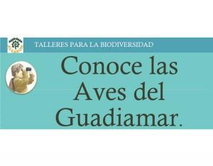 Conoce_A_Las_Aves