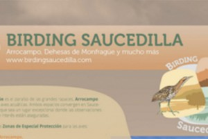 Folleto con las rutas Birding Sevilla