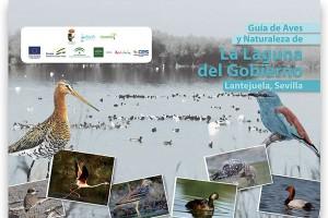 Guía de Aves y Naturaleza de la Laguna del Gobierno. Lantejuela, Sevilla_2