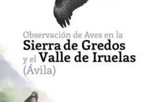 Observación de Aves en la Sierra de Gredos y el Valle de Iruelas