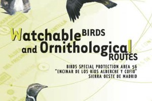 Watchable birds and Ornithological Routes. Birds Special Protection Area 56