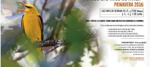 Algakon curso ornitología Avila