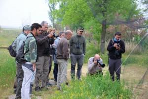 Algakon-curso ornitología Avila 1