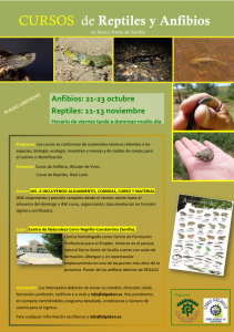 curso anfibios y reptiles