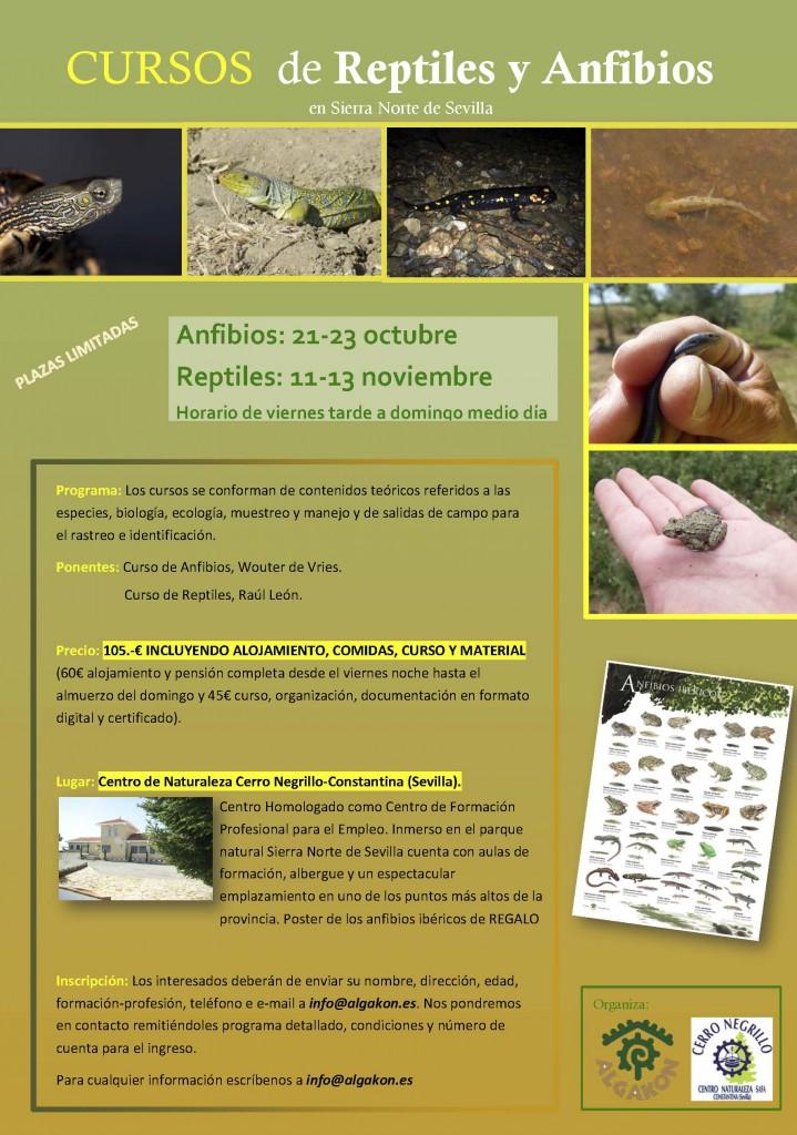 curso-anfibios-y-reptiles