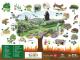 Algakon poster campaña incendios forestales