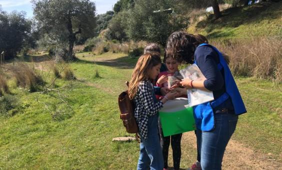 algakon talleres flora y fauna