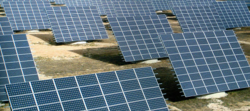 Algakon Estudio impacto y avifauna planta solar campiñaSevilla